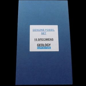 NGS 15 Specimen Genuine Fossil Set - 1