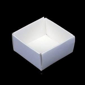 2 x 2 Inch White Card Specimen Trays
