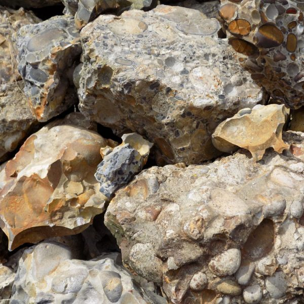 Puddingstone Conglomerate (1kg)