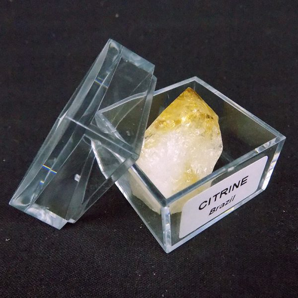 Citrine in Large Mag Box