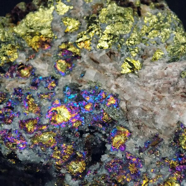 Peacock Ore from Morocco Close Up